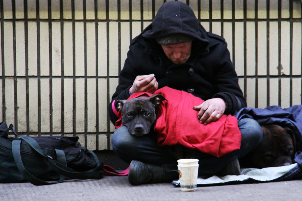 Homeless individual with pet | Connect To Care