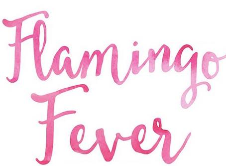 I love ... Flamingo