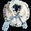 Thumbnail: Col Fille Charlie (crème-bleu)