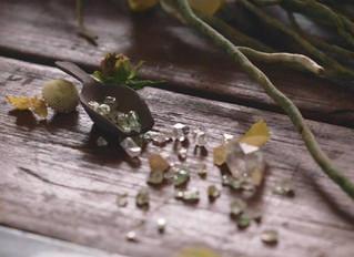 Bijouterie botanique saison nouvelle 2018