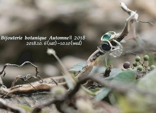 Bijouterie botanique Automne Ⅱ 2018
