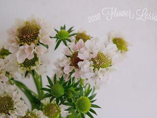 2018 Flower Lessonのお知らせ