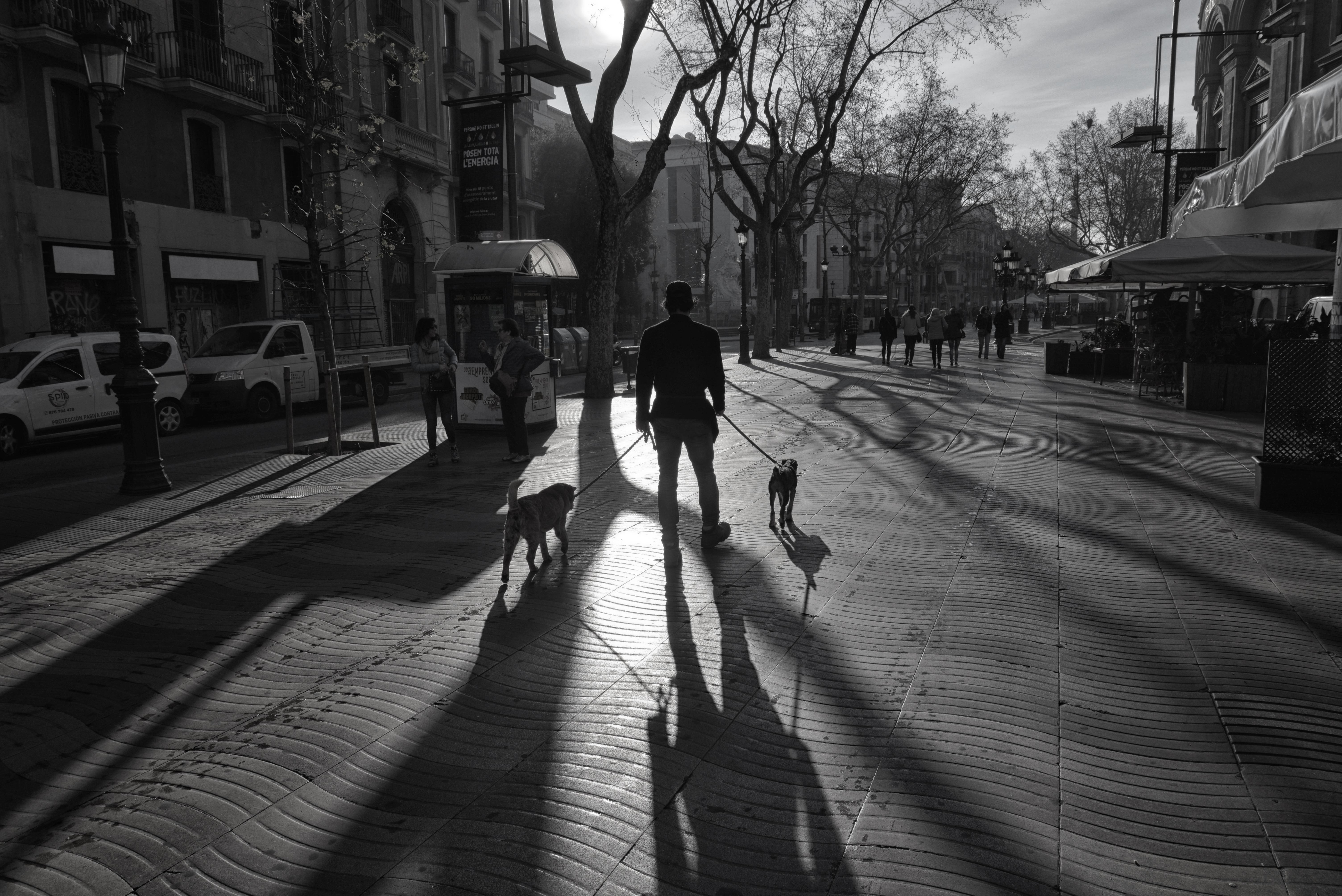 Барселона - февраль 2017