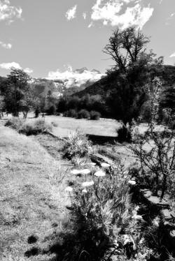 El Tronador. Patagonia