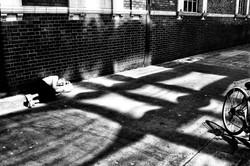 Тени Лондона. 2013