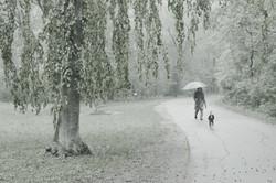 Лаксенбург. Австрия. 2013