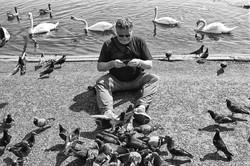 Повелитель птиц. Лондон. 2013