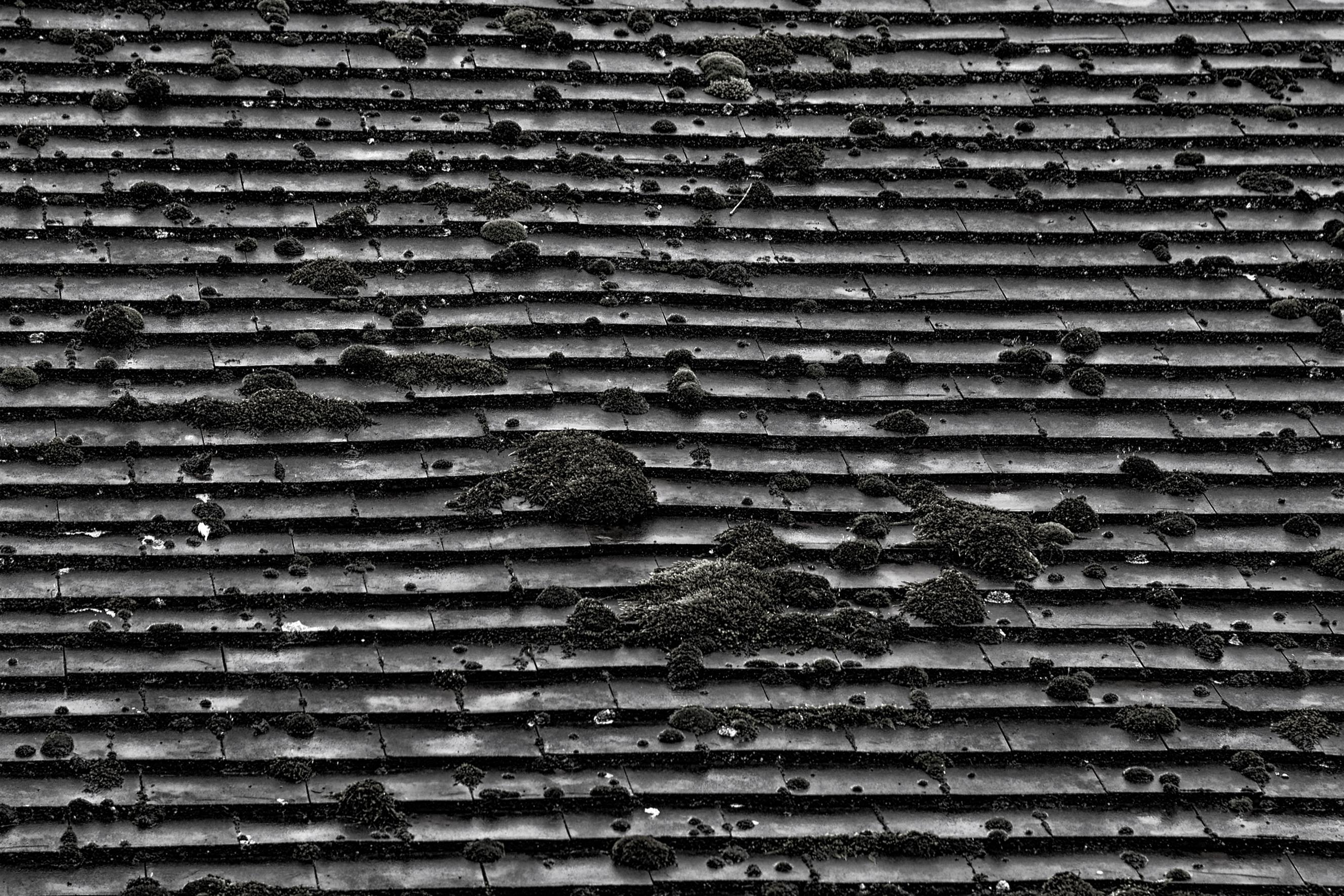 Текстуры - Шамбор 2013