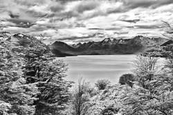 Argentinian Like. Patagonia