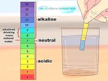ph scale_edited.jpg