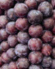 pile-of-plums-P5CTR5Z.jpg