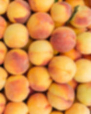 fresh-ripe-peaches-background-PF58KS8.jp