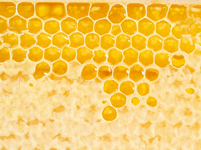 bee-honeycomb-closeup-a-fresh-stringy-dr