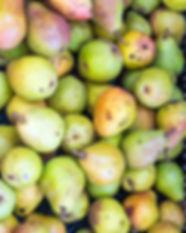 pile-of-ripe-green-pears-PUN9ZJV.jpg