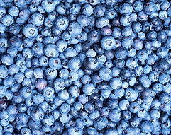 fresh-blueberries-background-with-copy-s