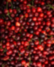 cherry-fresh-organic-berries-fruit-backg