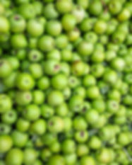 green-apples-96J3ULC.jpg