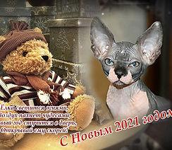 oformi-foto.ru (2).jpg