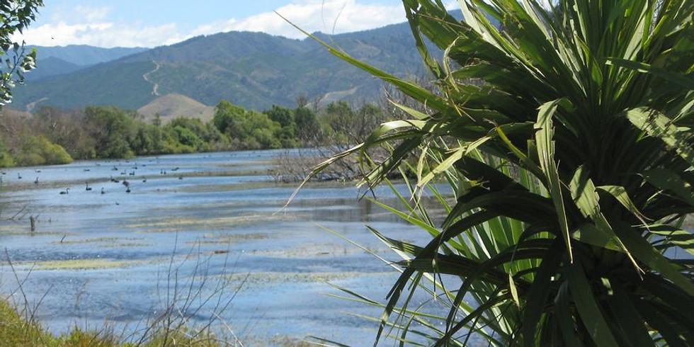 World Wetland Day - Para Wetlands