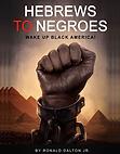 Hebrews to Negroes Vol.1 | Ronald Dalton Jr.