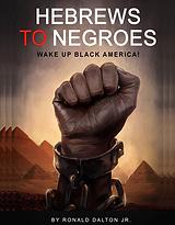 Hebrews to Negroes 1 Volume 1