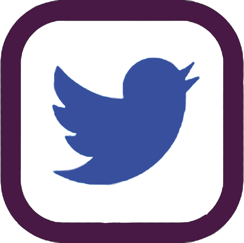 HOLT twitter copy