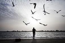 senegal - saloum delta- travel-report.nl