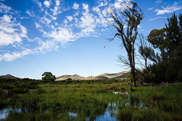 south africa - the great karoo - travel-report.nl