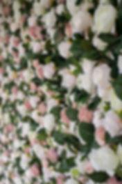 Botanical Backdrops-183.jpg