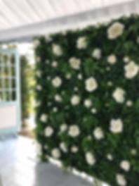 Green Queen Botanical Backdrops Flower W