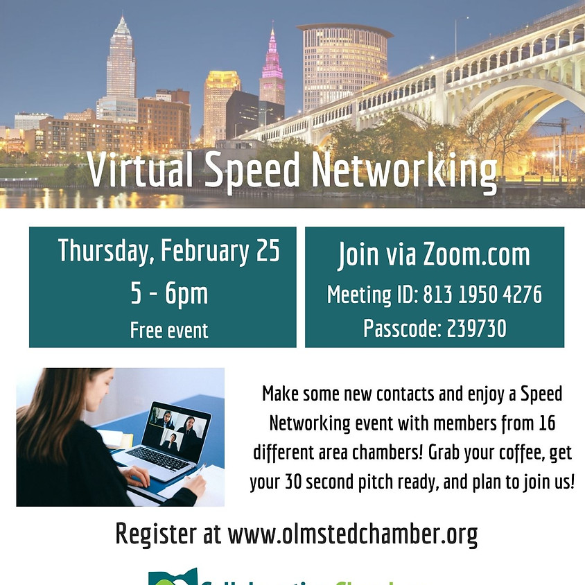 Virtual Speed Networking