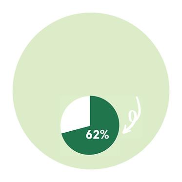 Pregnancy Statistics