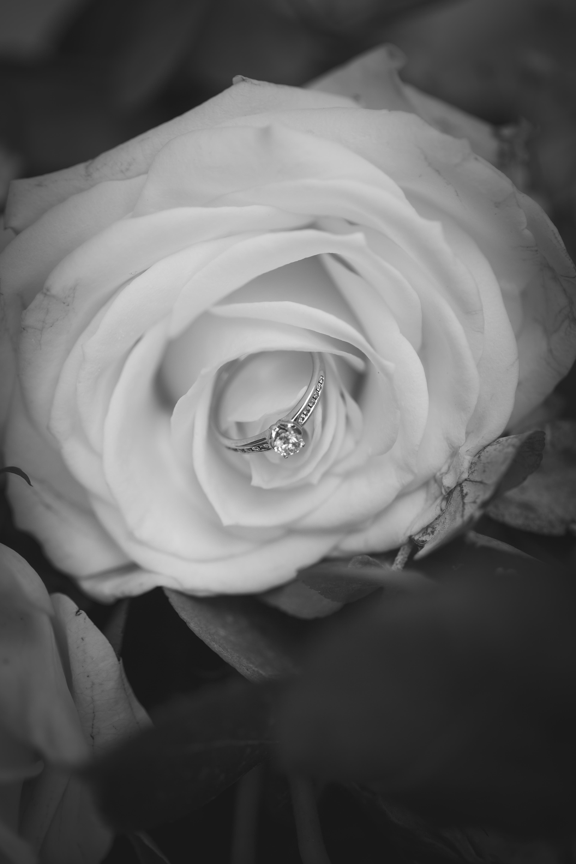 Wedding Photos-97