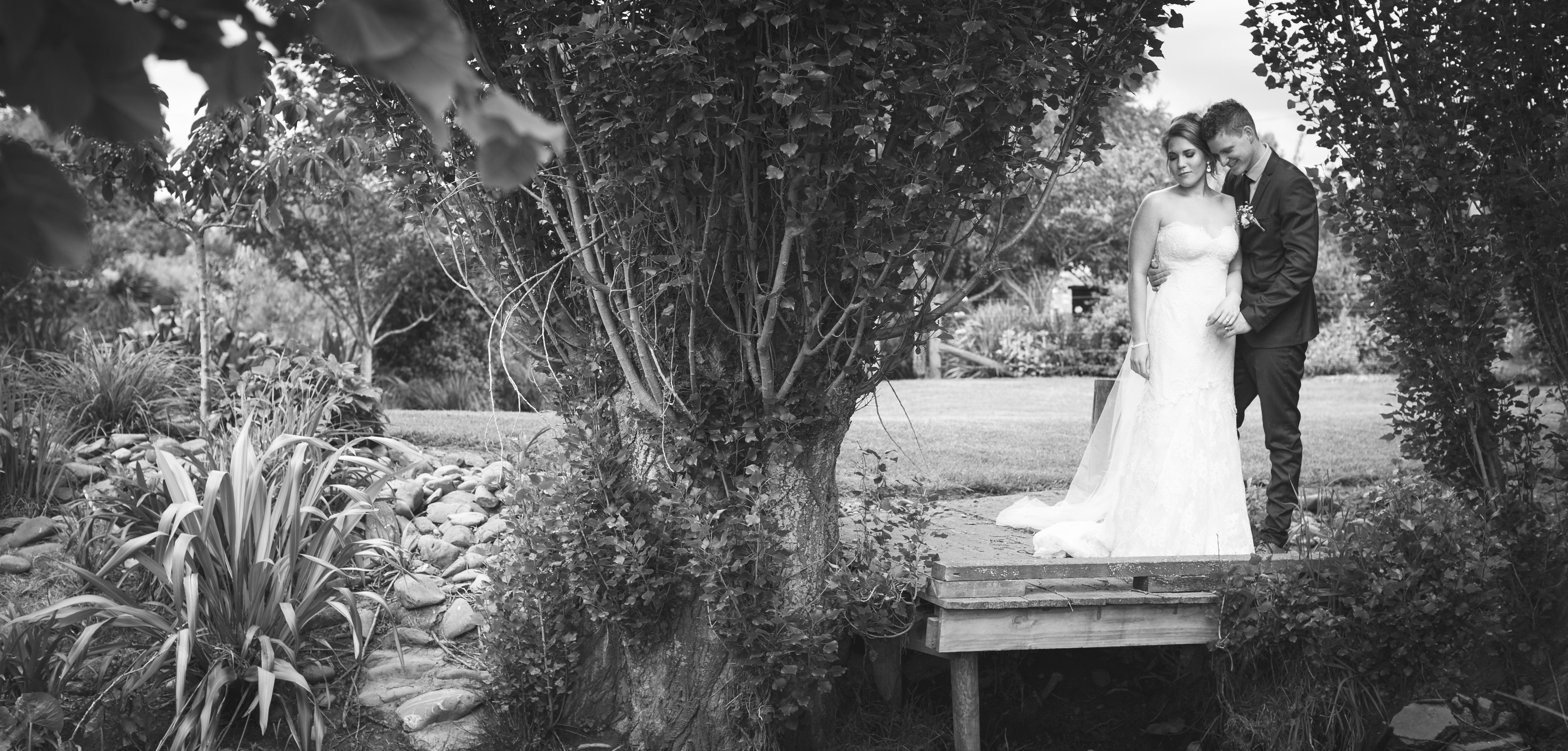 Wedding Photos-332