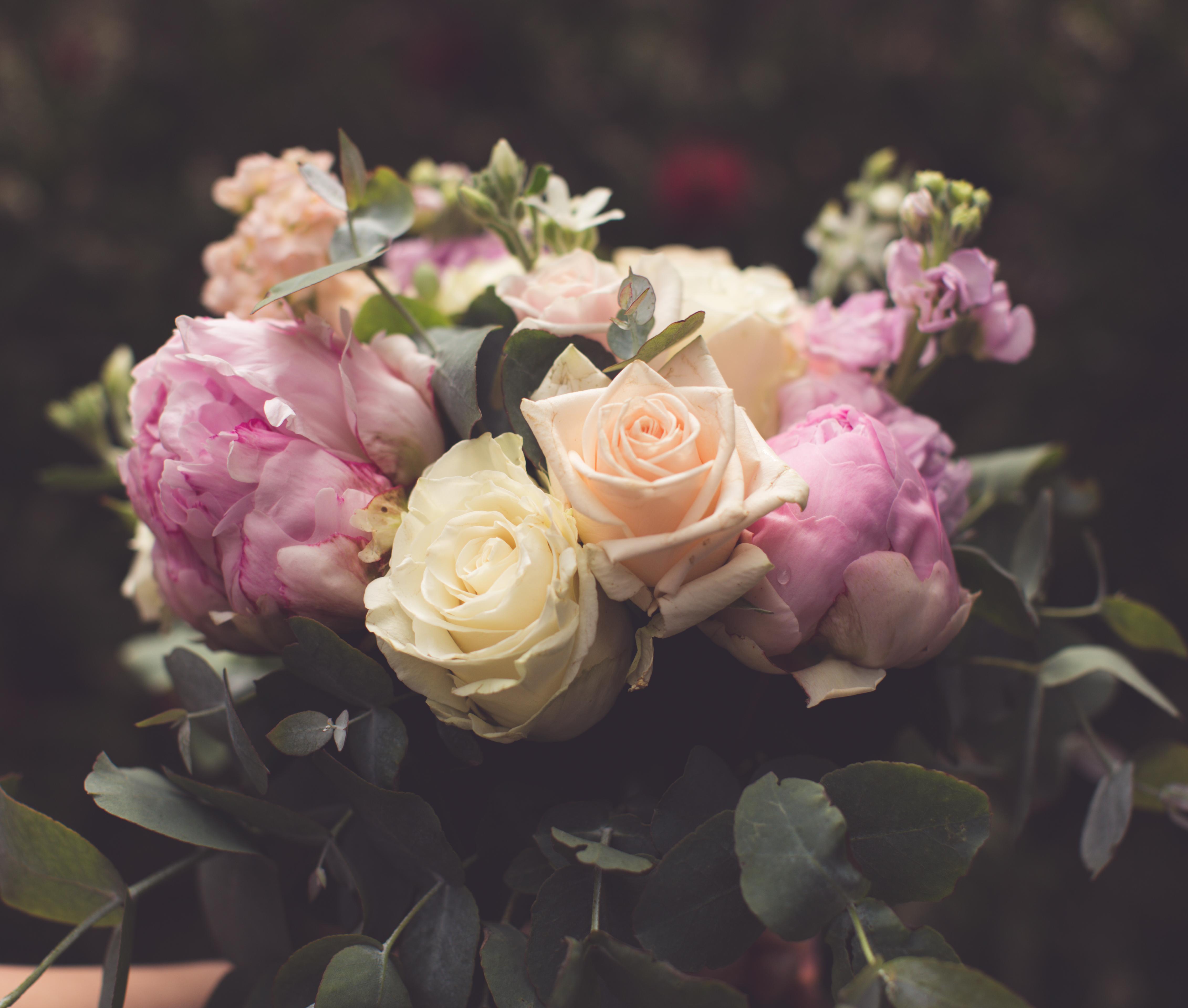 Wedding Photos-101