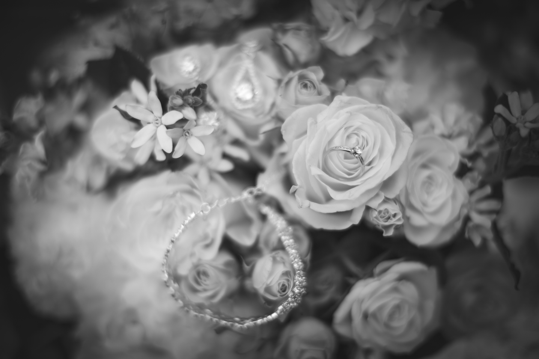 Wedding Photos-91