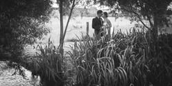 Wedding Photos-365