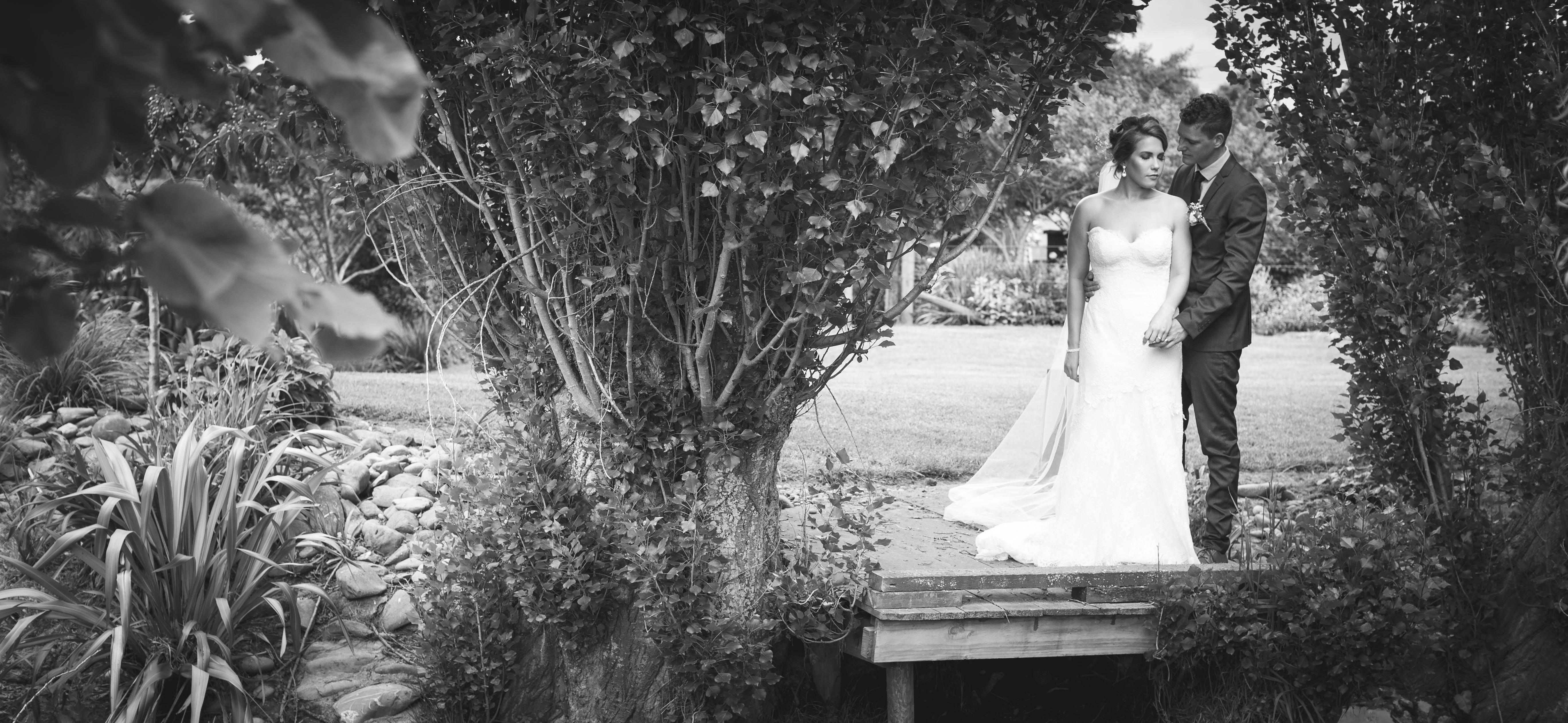 Wedding Photos-327