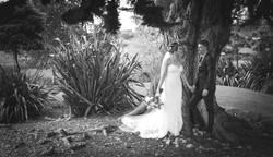 Wedding Photos-351