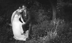 Wedding Photos-377