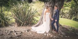 Wedding Photos-349