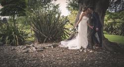 Wedding Photos-355