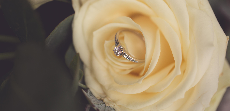 Wedding Photos-96