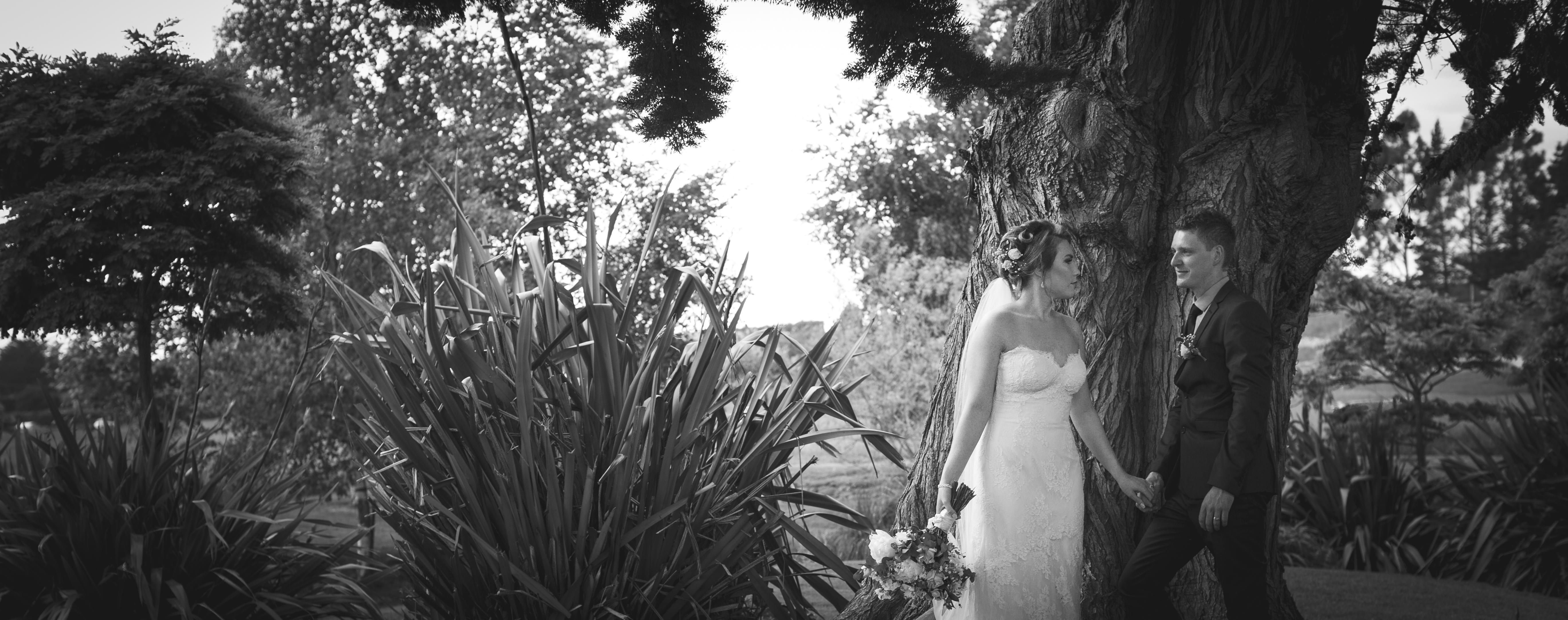 Wedding Photos-352