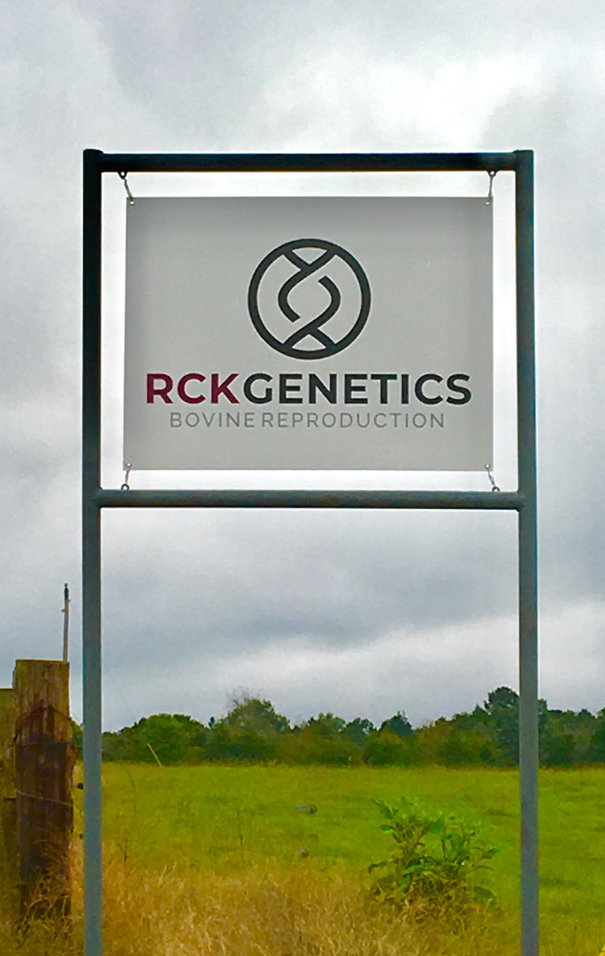 RCK Genetics - Cattle AI Training in Arkansas