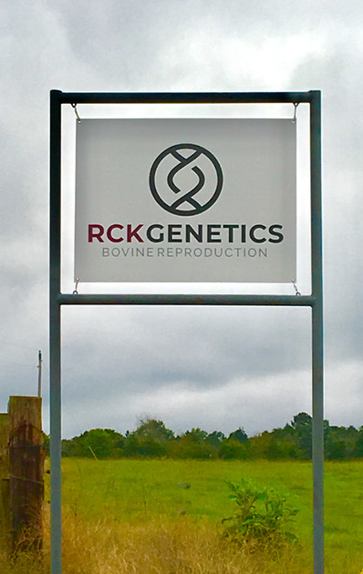 RCK Genetics - Cattle AI Training in Arkansas