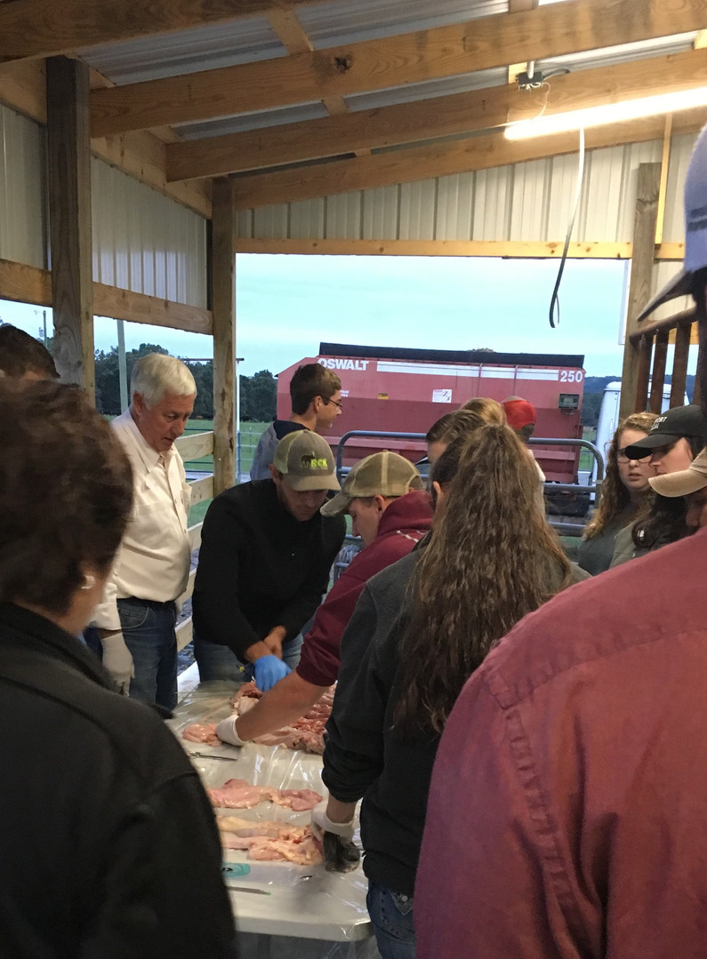 Cattle AI Training Course in Arkansas