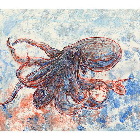 Sumayan Octopus