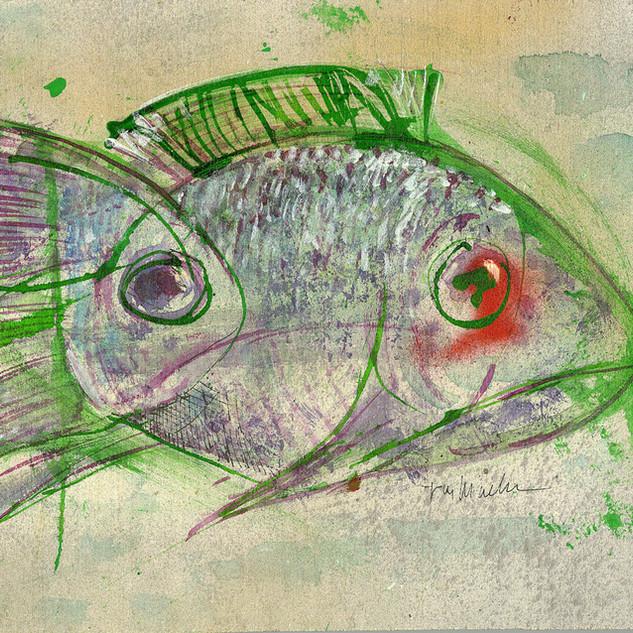 Bi--Fish