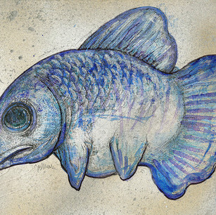 Snouty Blue Fish